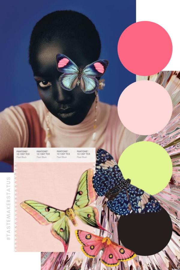 Butterfly Mood Board - Tastemaker Status